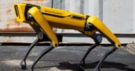 Spot, el robot con forma de perro
