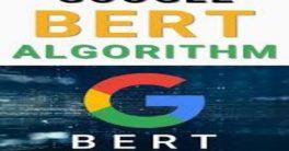 La Inteligencia Artificial de Google para búsquedas más concisas se llama BERT
